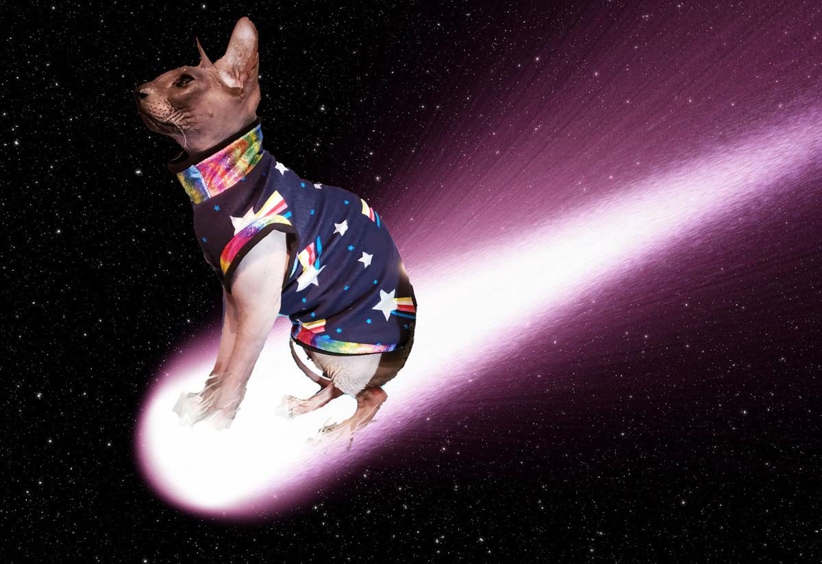 cometjokerprodcrop